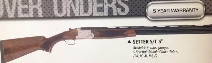 12 and 20 gauge Tri-Star Setter up for auction